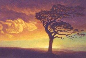 tree-bending-in-the-wind
